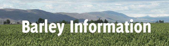 barley information header image